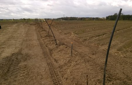 uprawa_plantacji3